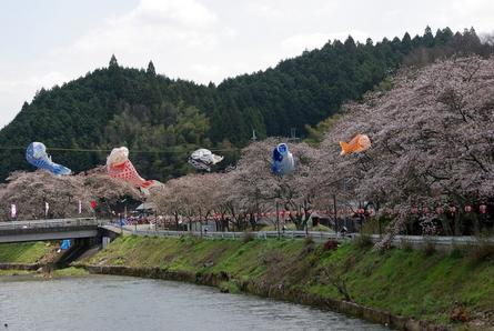 Mikumari04_3