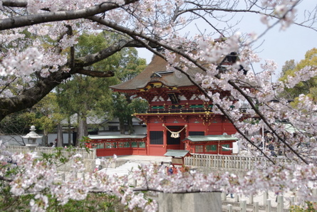 Ieyasu01