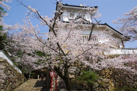 Ogura01