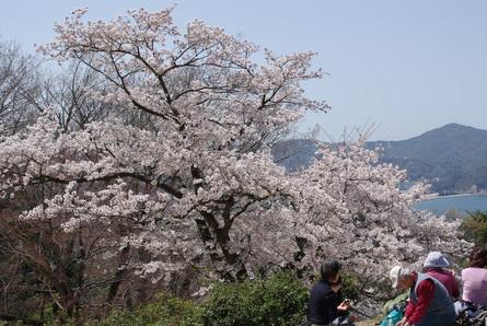 Kanegasaki12_2