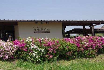Nara15