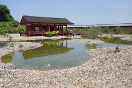 Nara161