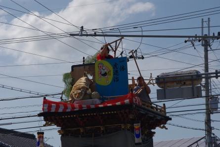 Asagoi11
