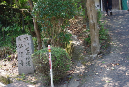 Honkaido04