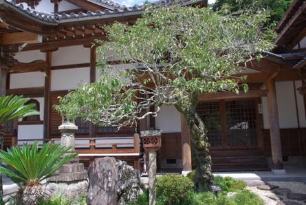Iwaya011