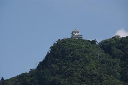 Gifu11