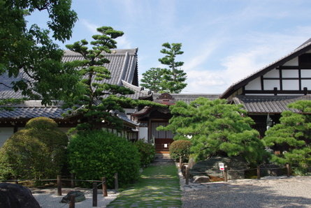 Gifu17