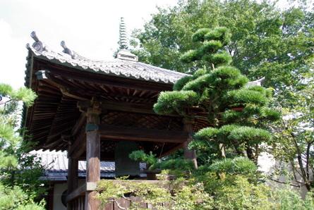Gifu20