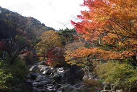 Yunoyama06