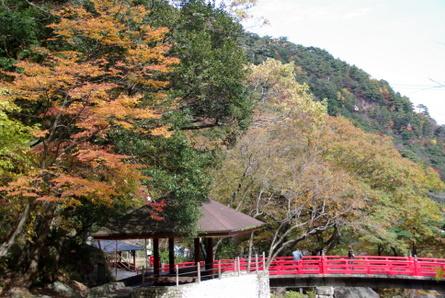 Yunoyama16