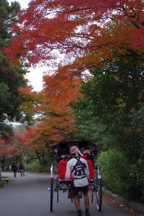 Maruyama04