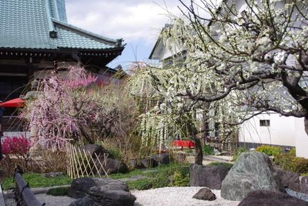 Koujyuji02