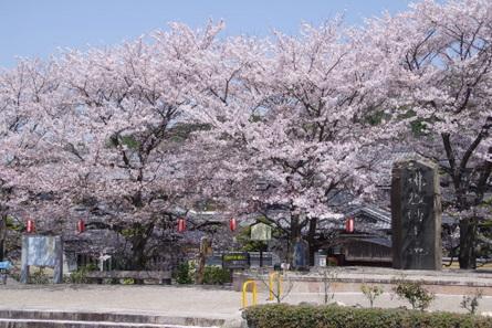 Yamanobe02