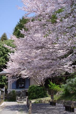 Yamanobe04