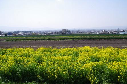 Yamanobe010
