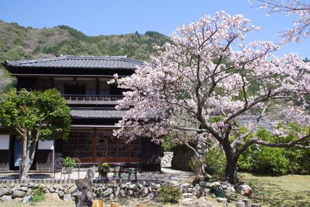 Yokowa11