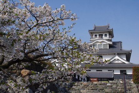 Nagahama10