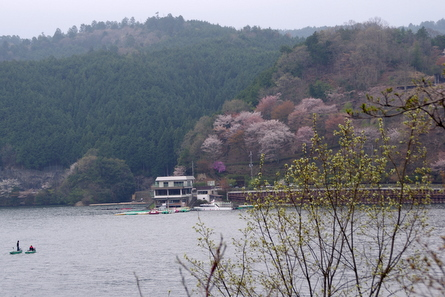 Tsuburoko04