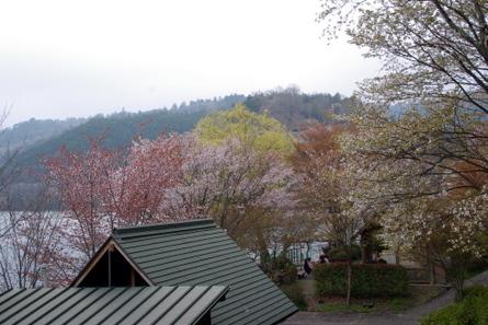 Tsuburoko05