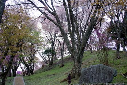 Maruyama01_2