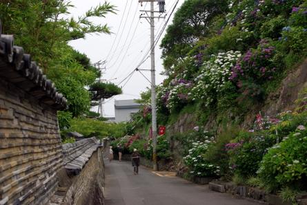 Daijiji11