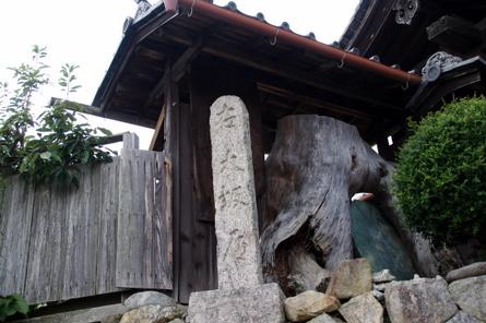 Muronoki11