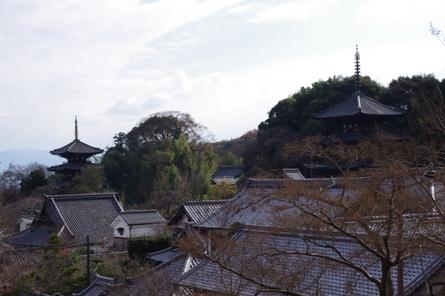 Taimaoku03