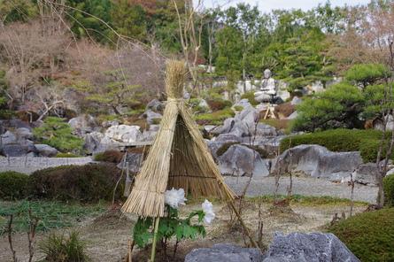 Taimaoku07