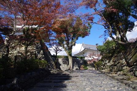 Inuyamajyo03_2