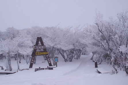 Gozaisho03