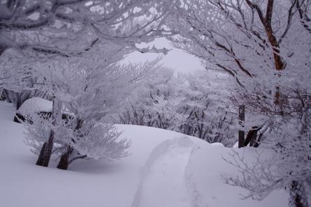 Gozaisho04