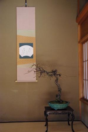 Shirotori02
