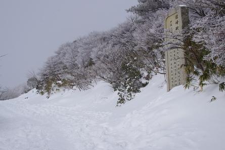 Gozaisho11