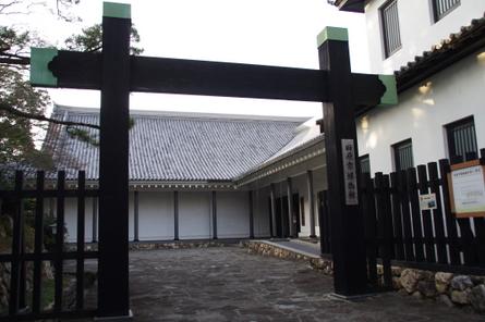 Tahara11
