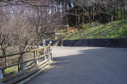 Hiraoka12