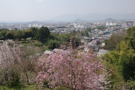 Yamanobe03