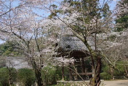 Yamanobe15