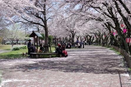 Gojyogawa11_2