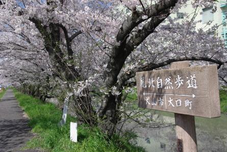 Gojyogawa23