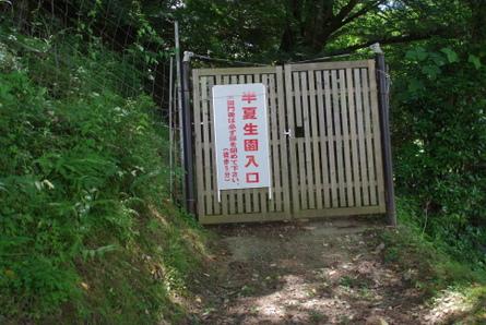 Mitsue00