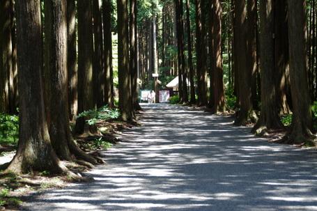 Chichibunomiya02