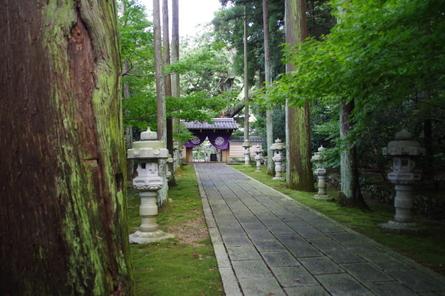 Daichiji02
