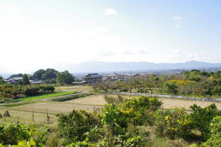Yamanobe12