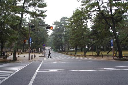 Nara20