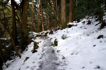 Yamanaka04