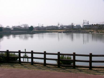 Yokooji02