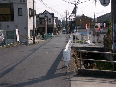 Yokooji05