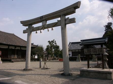 Yokooji13