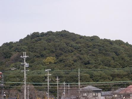 Yokooji16