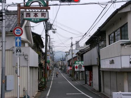 Yokooji18